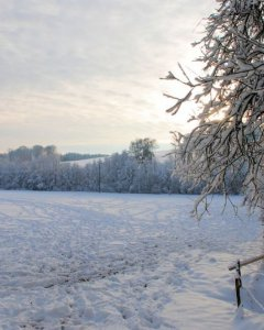 Zima w Afrodycie