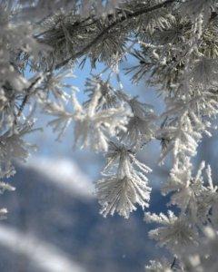 Zimowy wypoczynek