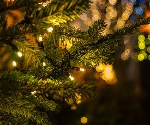 Magiczne Boże Narodzenie 2019
