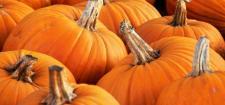 Jesienny weekend Halloween nad morzem