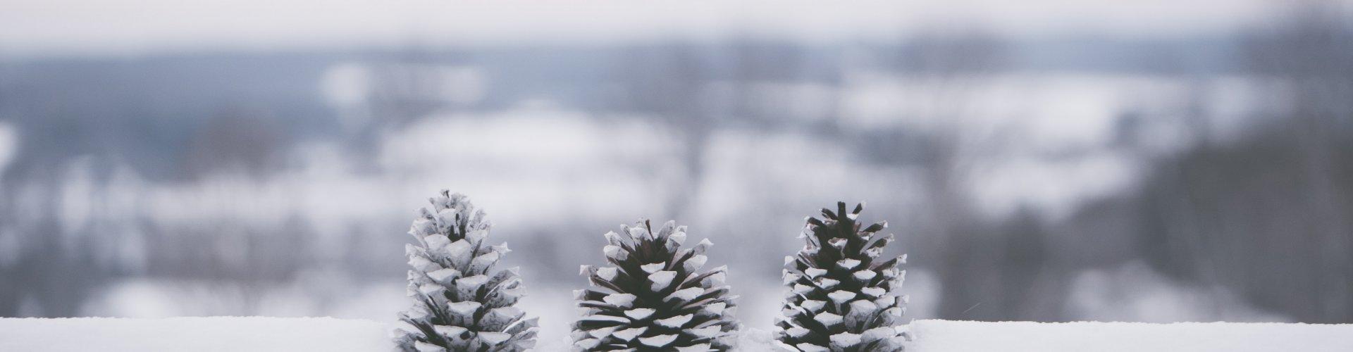 Naturalnie Zimowa Aura