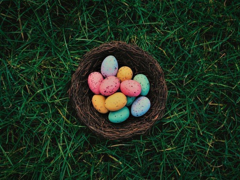 Wielkanoc w Niemczy | 3 dni