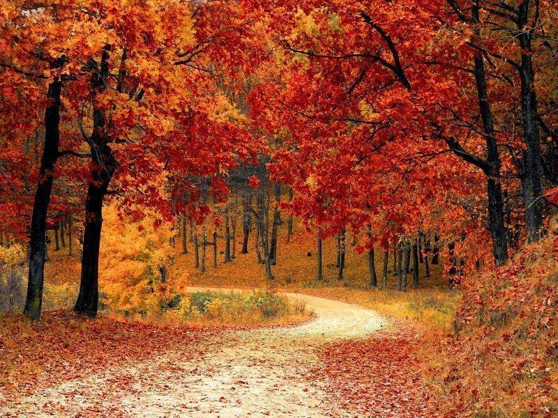 Aktywna Jesień w Górach | 5 dni