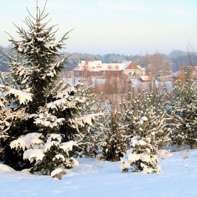 Zimowy weekend przy kominku 150 zł od osoby