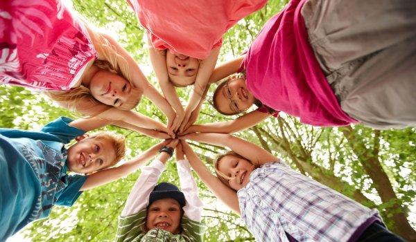 Zielone szkoły i wycieczki jednodniowe dla szkół