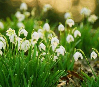 Wiosenny Pobyt w Górach Świętokrzyskich