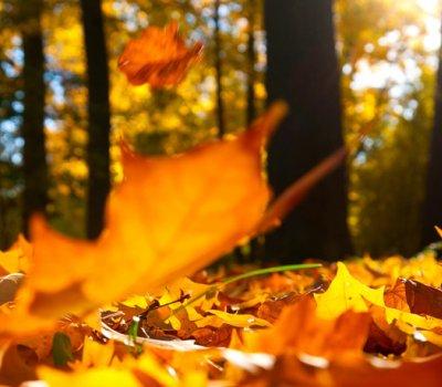 Jesienny pobyt w Górach Świętokrzyskich