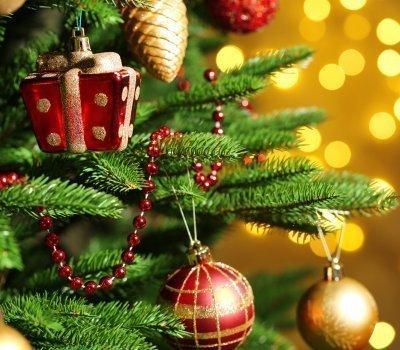Boże Narodzenie w Górach Świętokrzyskich 2020
