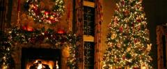 Boże Narodzenie 2016 w Sielance