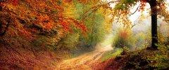 Weekend listopadowy w Sielance