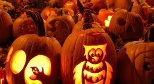 Rodzinne Halloween 28.10.-01.11.2016