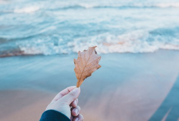 Jesień nad morzem - DZIECI GRATIS