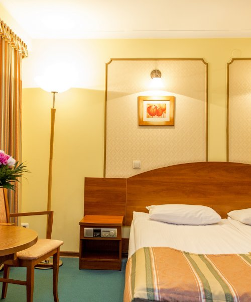 Двухместный премиум с одной кроватью