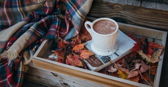 Jesienny  Las Time