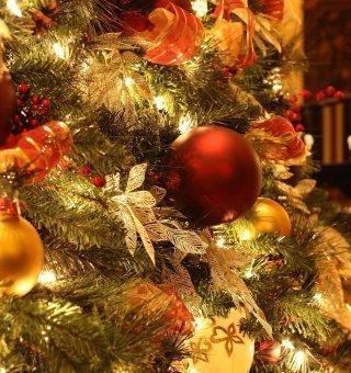 Weihnachten im Jelenia Struga 22-26.12.2017