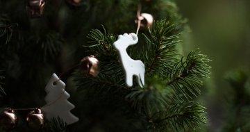 Boże Narodzenie w Jeleniej Strudze 22-26.12.2017