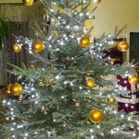 Boże Narodzenie na Mazurach 4 dni 2 osoby 1290 zł