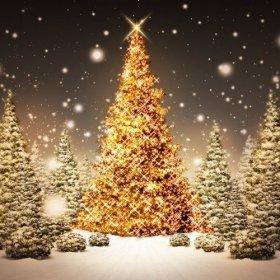 Boże Narodzenie 2019  na Mazurach