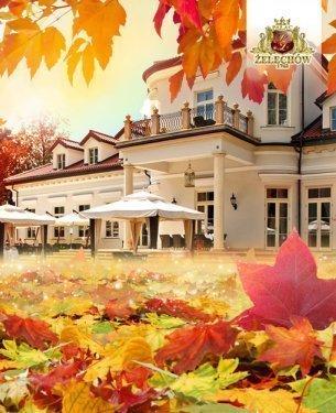 Witamy piękną złotą jesień