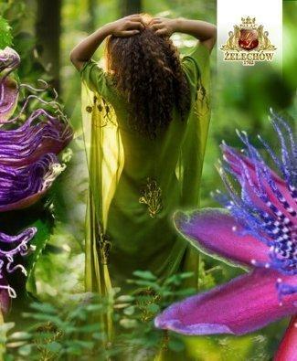WAKACJE W SPA - Ceremonia Egzotyczny Raj Passiflory