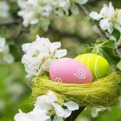 Wielkanoc w Pałacu