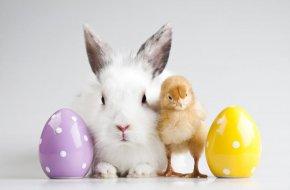 Radosna Wielkanoc w Runowie