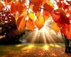 Jesienny wypoczynek