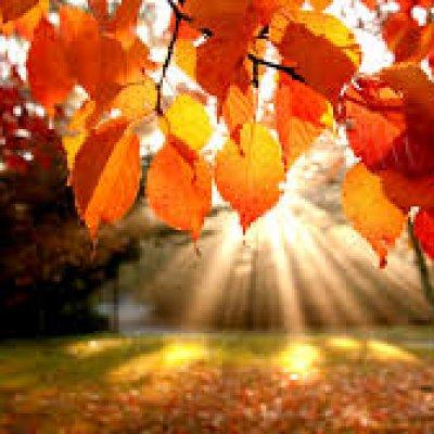 Jesienny spadek cen - oferta last minute