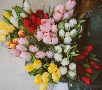 8 marzec - Dzień Kobiet
