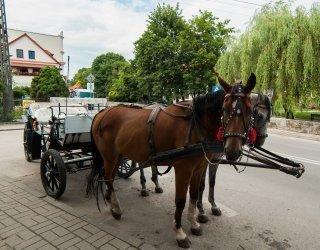 Zwiedzanie bryczką Kazimierza Dolnego