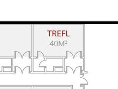 TREFL - VIP ROOM