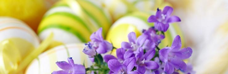 Aktywna Wielkanoc - 9 dni