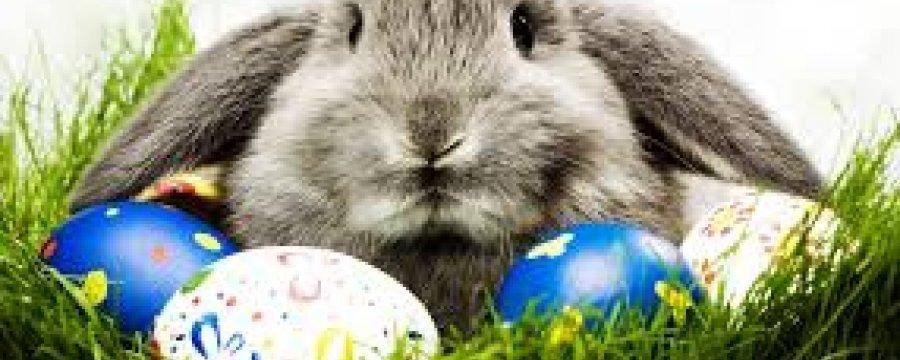 Oferta Święta Wielkanocne