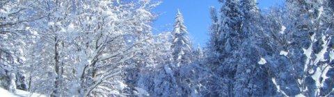 Zimowy luksus