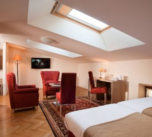 Single room with minibar