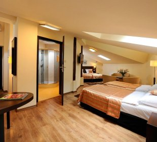 Quadruple Room with minibar