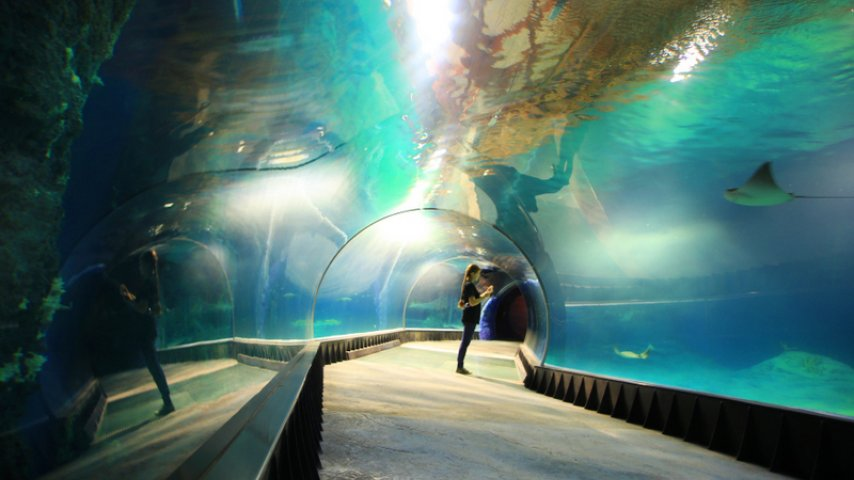 Family weekends with the Wroclaw Zoo