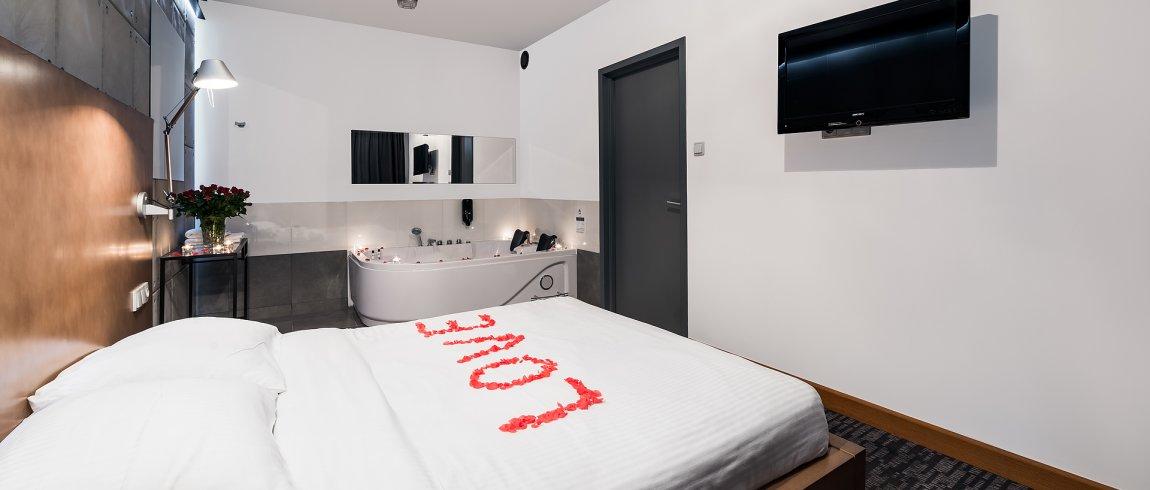De Lux LOFT-STYLE ROOM