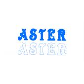 Aster Resort
