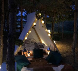 Bacusiowy obóz harcerski