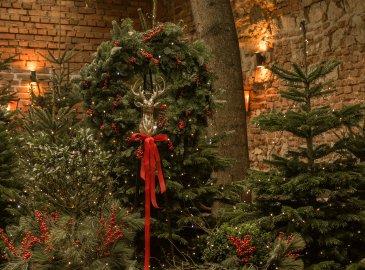 Magiczne Święta w Krakowie