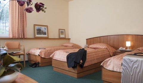 Pokój trzyosobowy (Triple) Standard