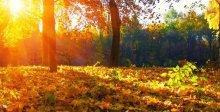 Jesienny pobyt w Ustroniu