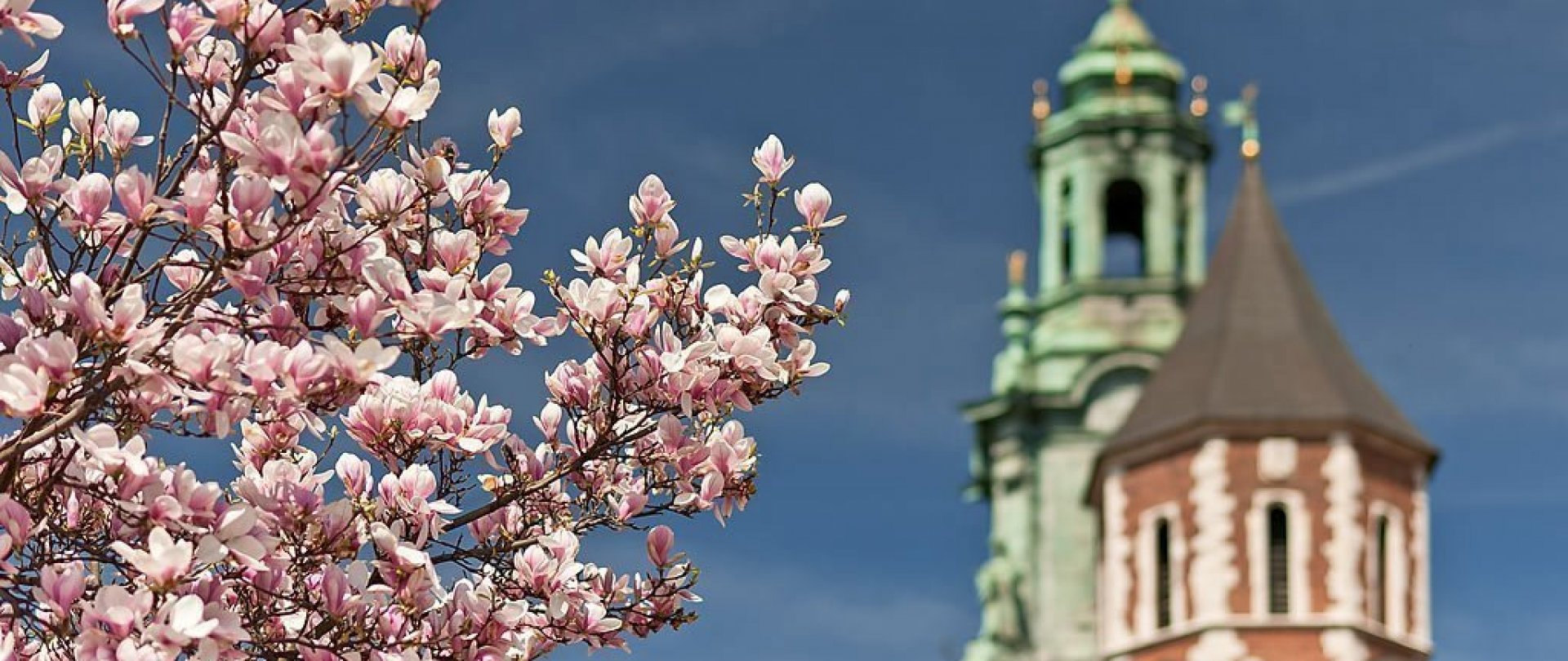 Romantic Spring in Krakow/Wiosna w Krakowie
