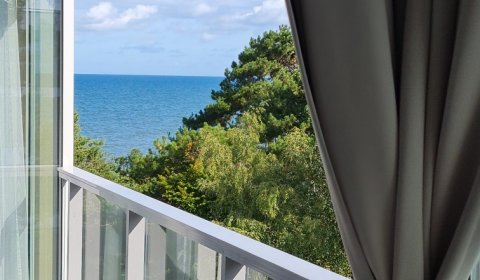 One-Bedroom Apartment no B419 (Side Sea View)