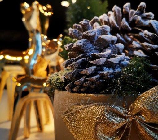Kameralne wi ta Bo ego Narodzenia Oferta z cateringiem
