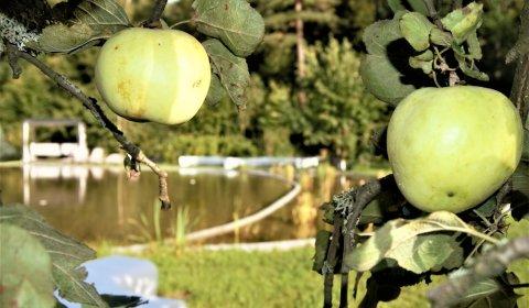 Jesień w Enklawie!  7 dni  jesienią dla Całej Rodziny z opcją bezpłatnej zmiany lub anulacji