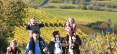 Wanderlust Pfälzer Weinsteig 3 Nächte
