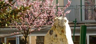 Frühlingsgefühle 3 Nächte