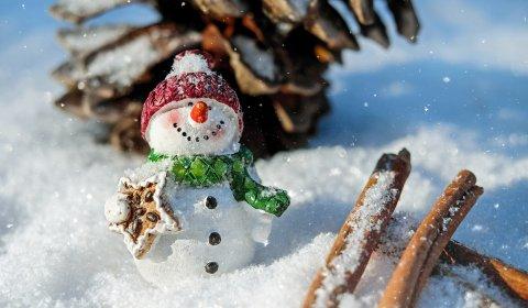 Zimowe Szaleństwo